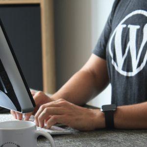 چه نوع وبسایت هایی را می توان با وردپرس ساخت؟